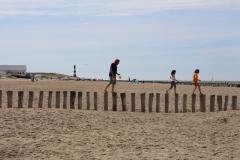 Auf den Buhnen am Strand
