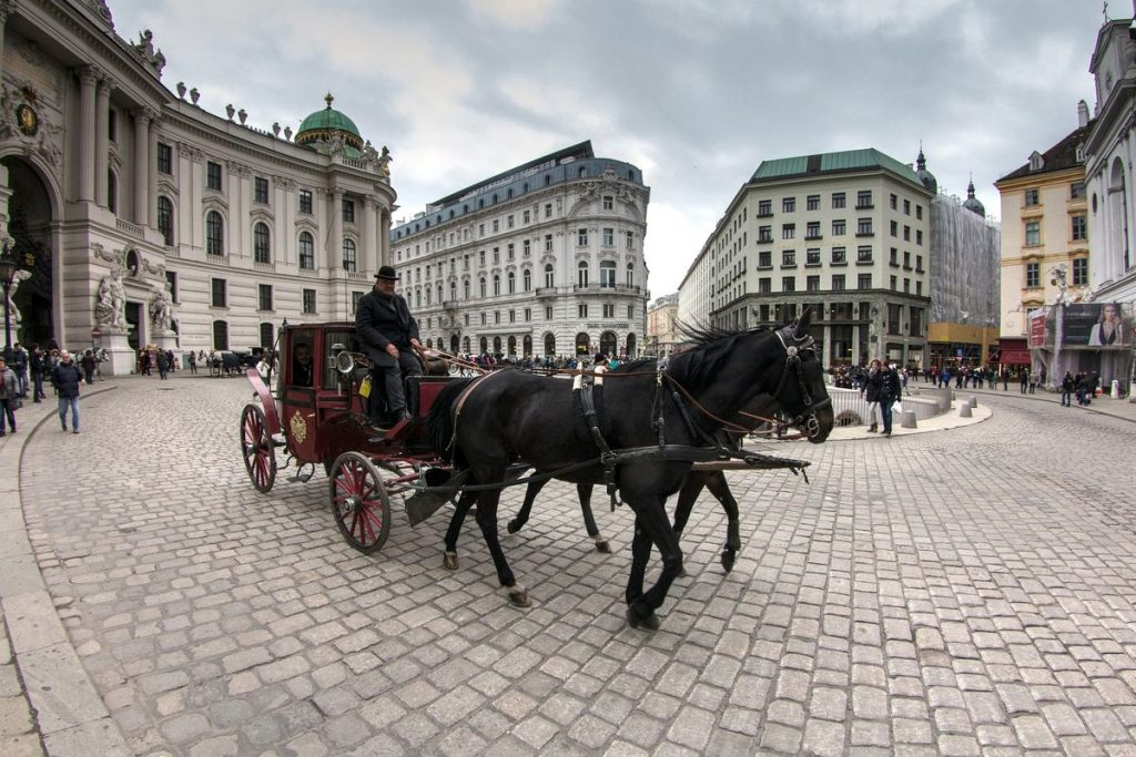 Typically Vienna: Fiaker for sightseeing